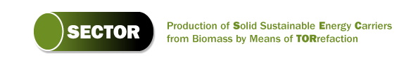 Production of Solid Sustainable Energy Carriers from Biomass by Means of Torrefaction