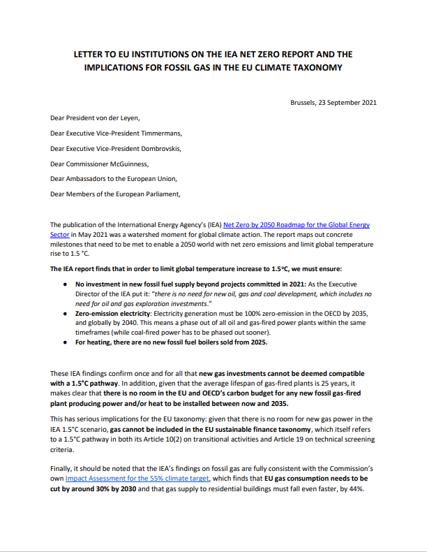 Letter to EU Institutions on the IEA Net Zero Report